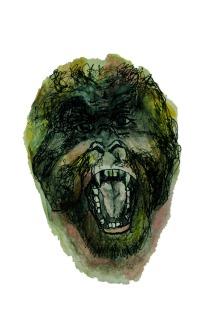 Lengua de Orangután