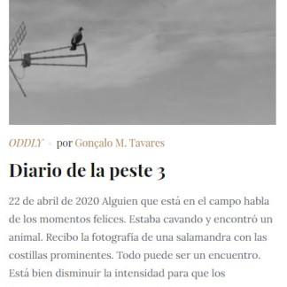 Diario de la Peste 3