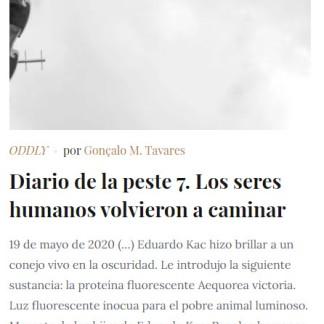 Diario de la Peste 7