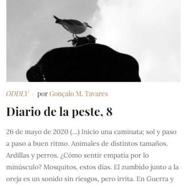 Diario de la Peste 8